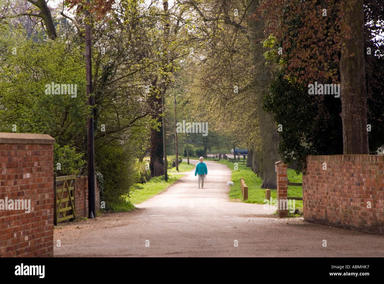 Wooded park in Milton Keynes, Buckinghamshire - Stock Image