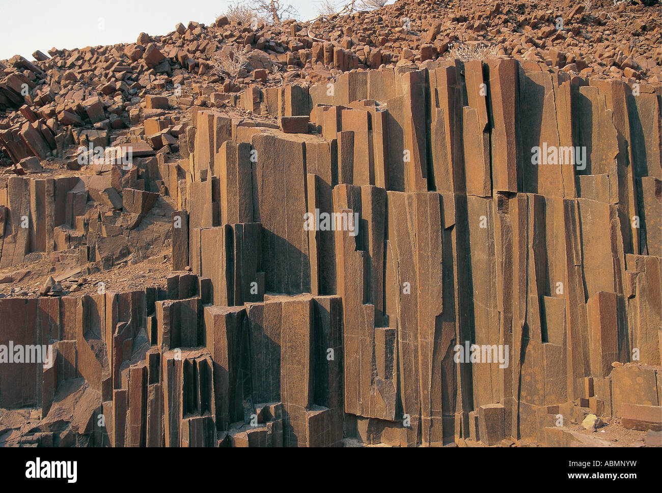 Organ Pipes shale rock formation dating back about 120 metres years Twyfelfontein Damaraland Namibia - Stock Image