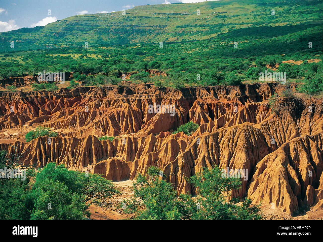 Soil erosion due to bad farming practices before proclamation Itala Game Reserve Natal South Africa - Stock Image