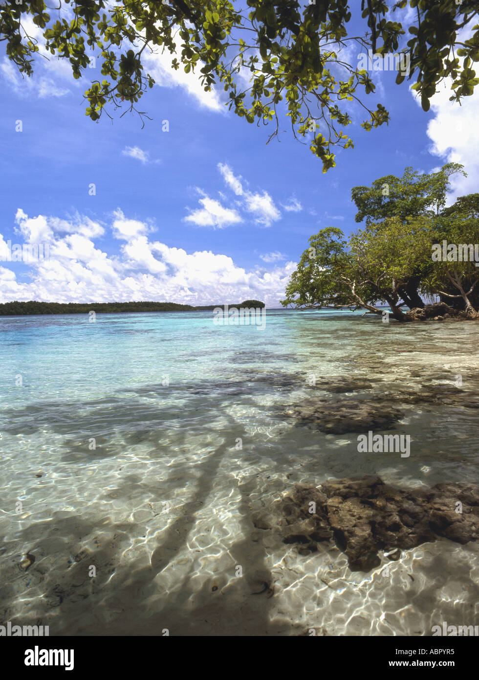 Lagoon, Solomon Islands - Stock Image