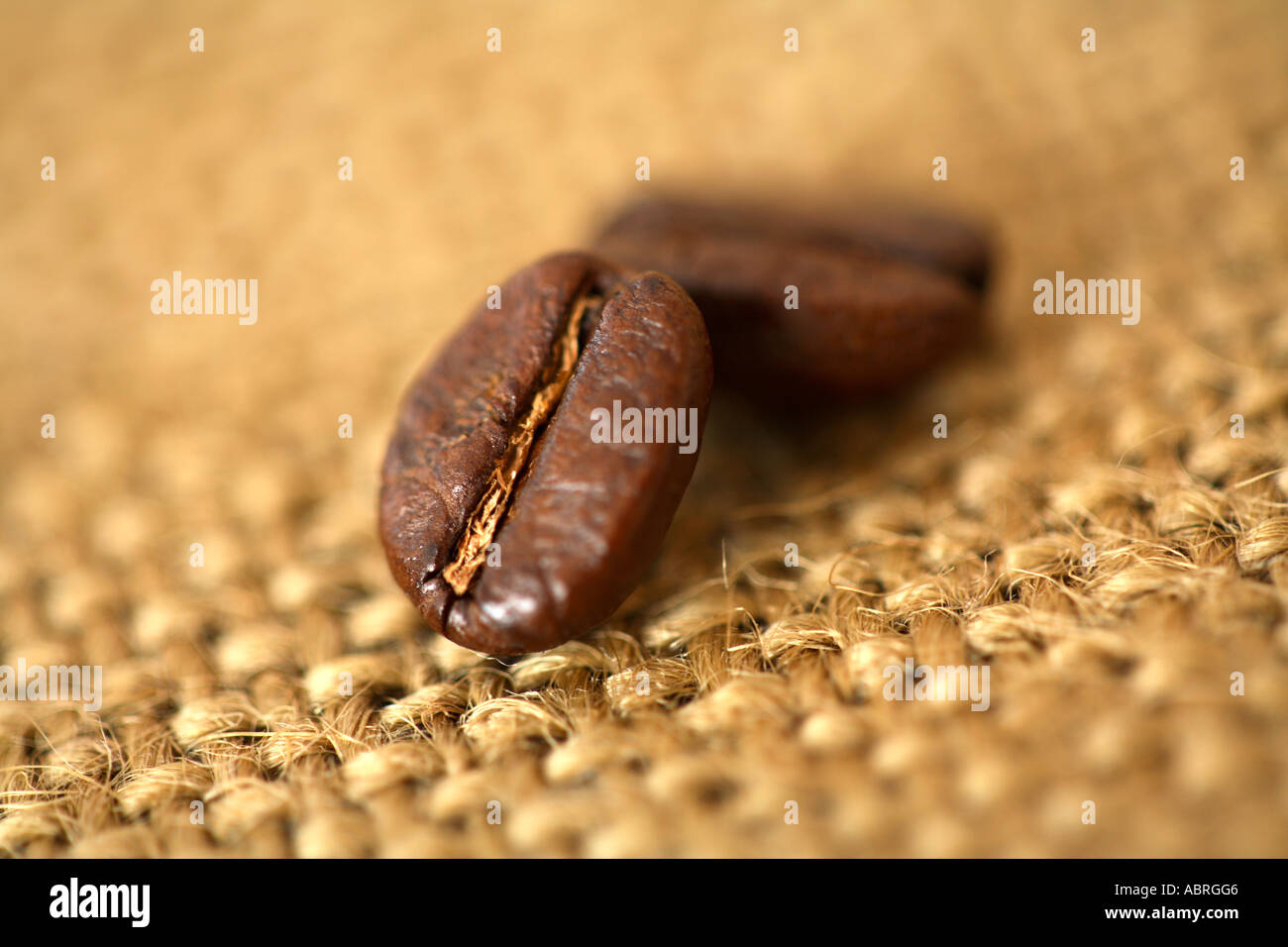 Close up of coffee beans on burlap surface - Stock Image
