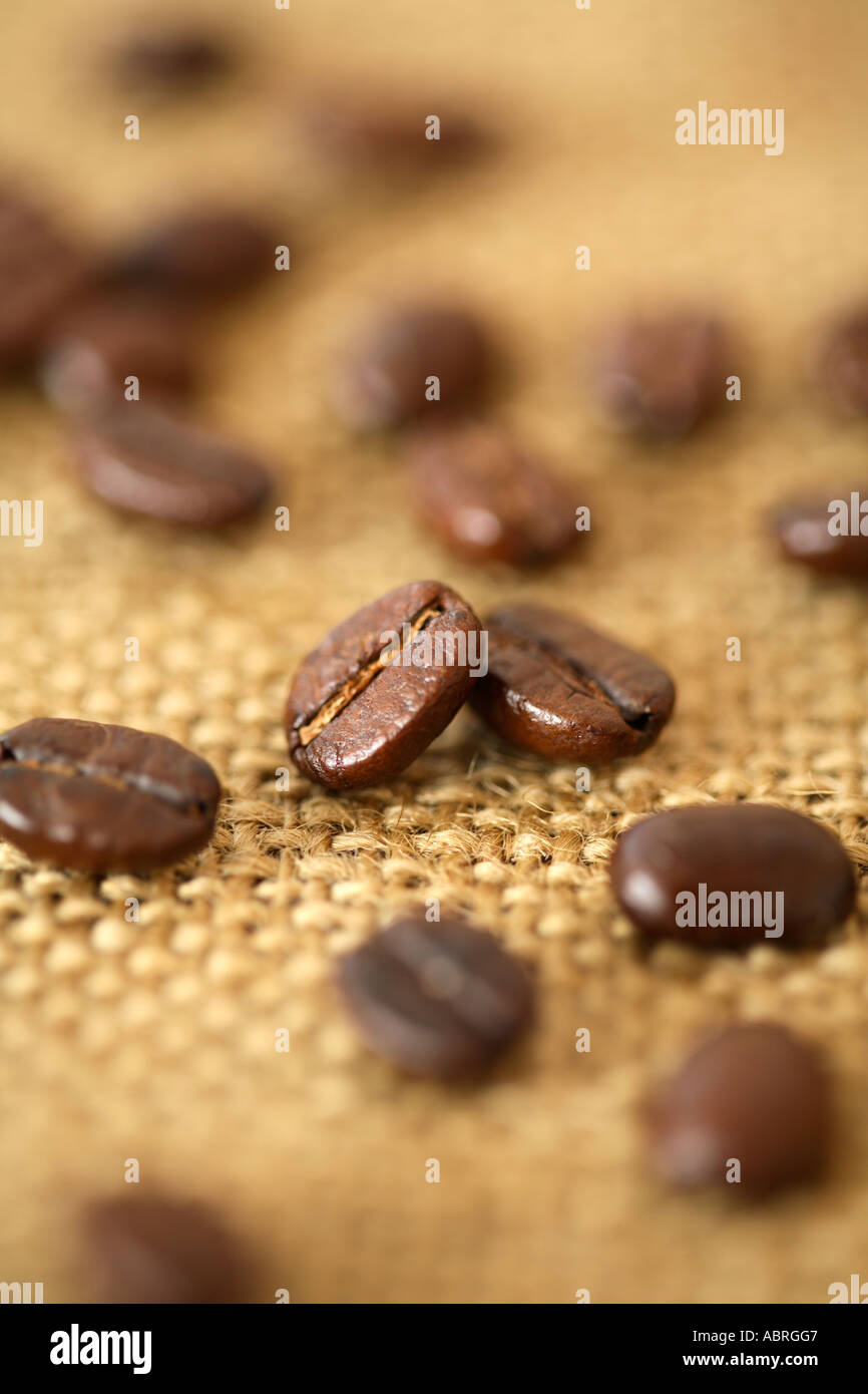 Coffee Beans on Burlap Surface - Stock Image