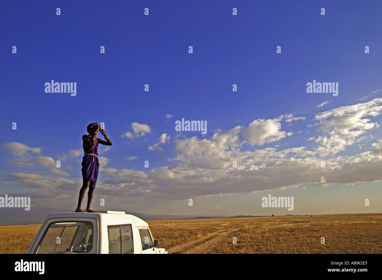 Maasai people Maasai guide looking for animals in the park Model Released Amboseli National Park Kenya - Stock Image