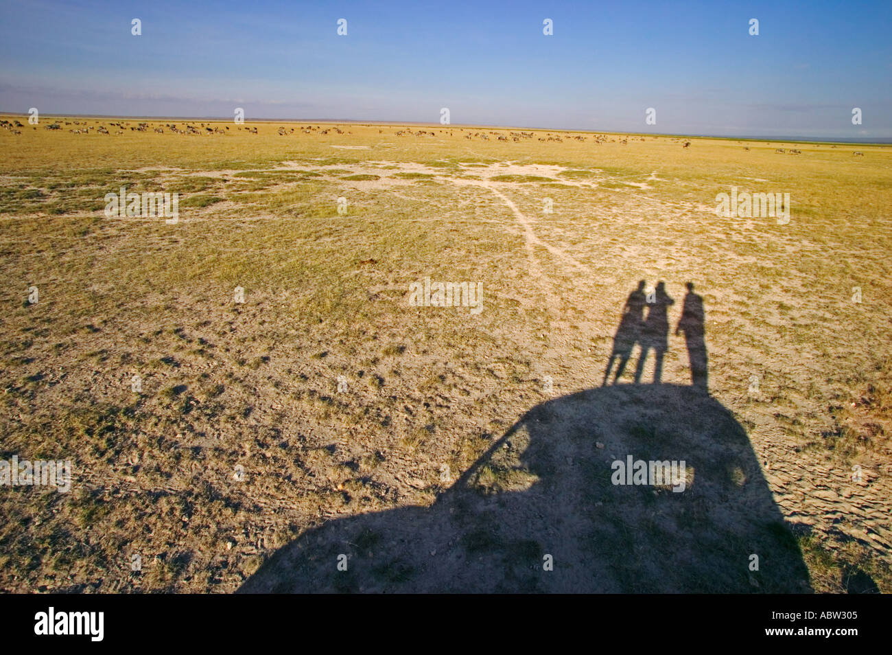 Tourism Shadow of car and people looking for wildlife in park Amboseli National Park Kenya - Stock Image