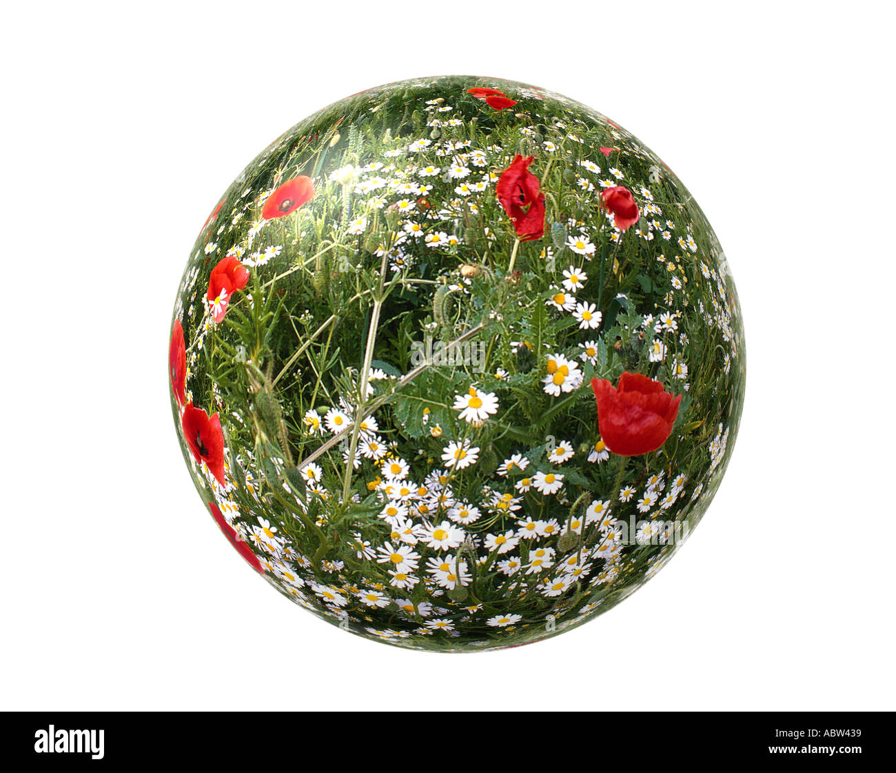 ENVIRONMENTAL CONCEPT: Our World - Stock Image