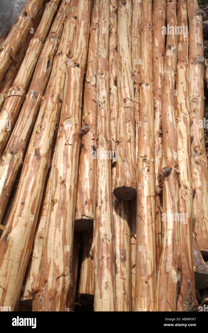 Wooden Pole For Sale Stock Photos & Wooden Pole For Sale