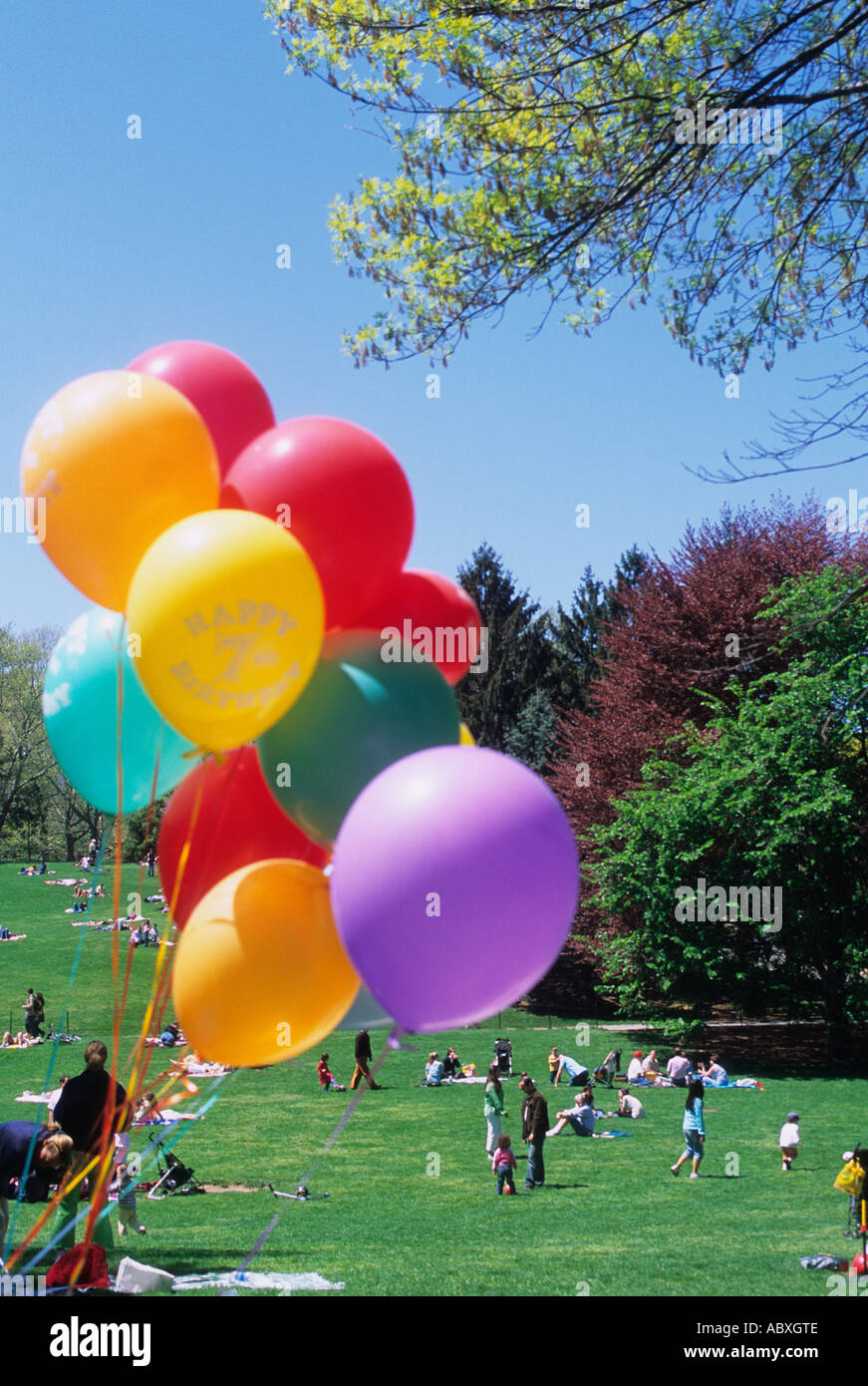 New York City Balloons At Birthday Party In Central Park On Cedar Hill Lawn The Spring