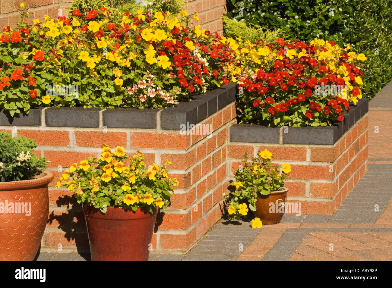 A raised flower bed with pots on a patio in a garden - Stock Image