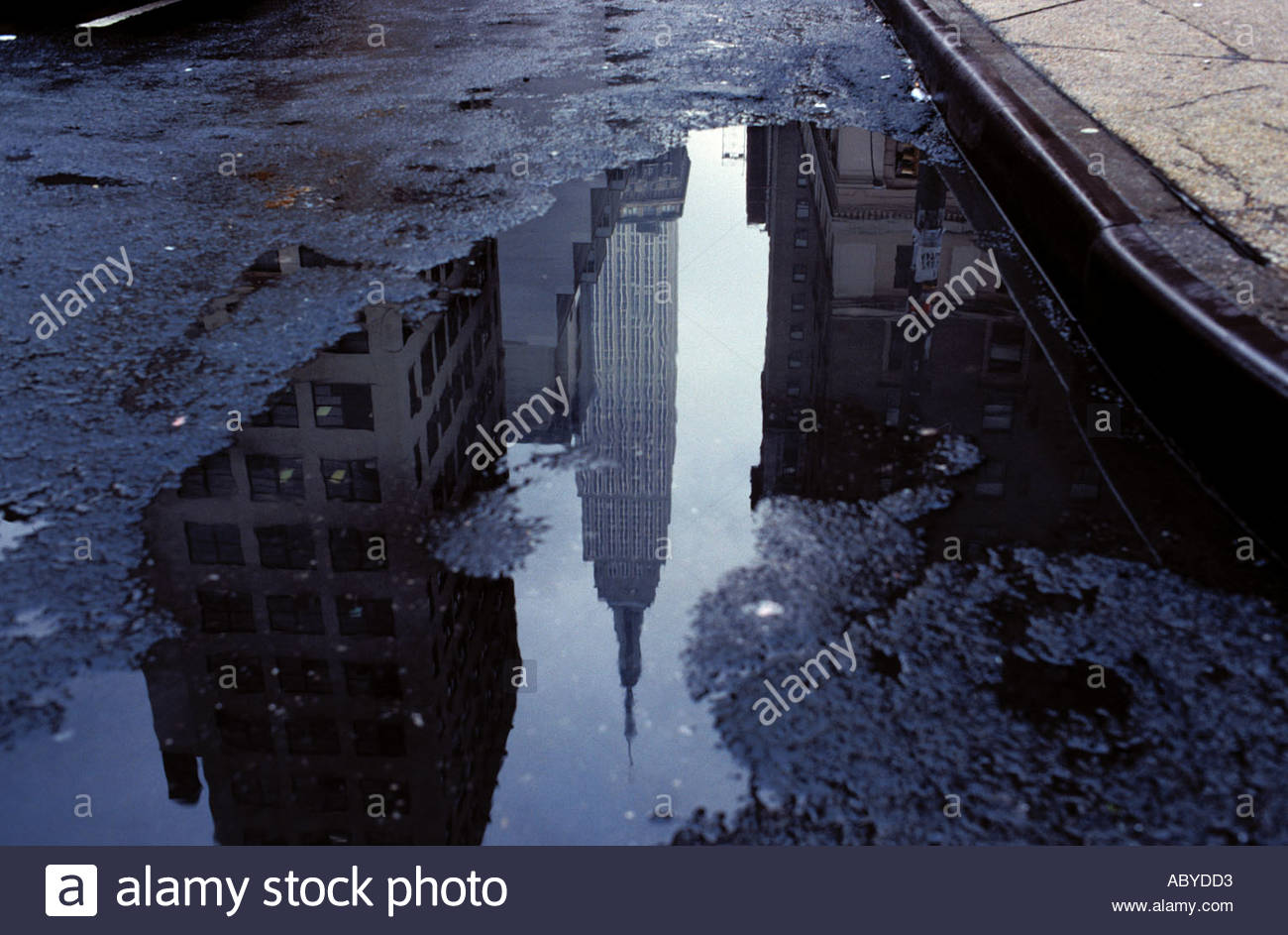Empire State Building reflexion in puddle rain water contrast prosperity affluence poverty street kerb New York City USA - Stock Image