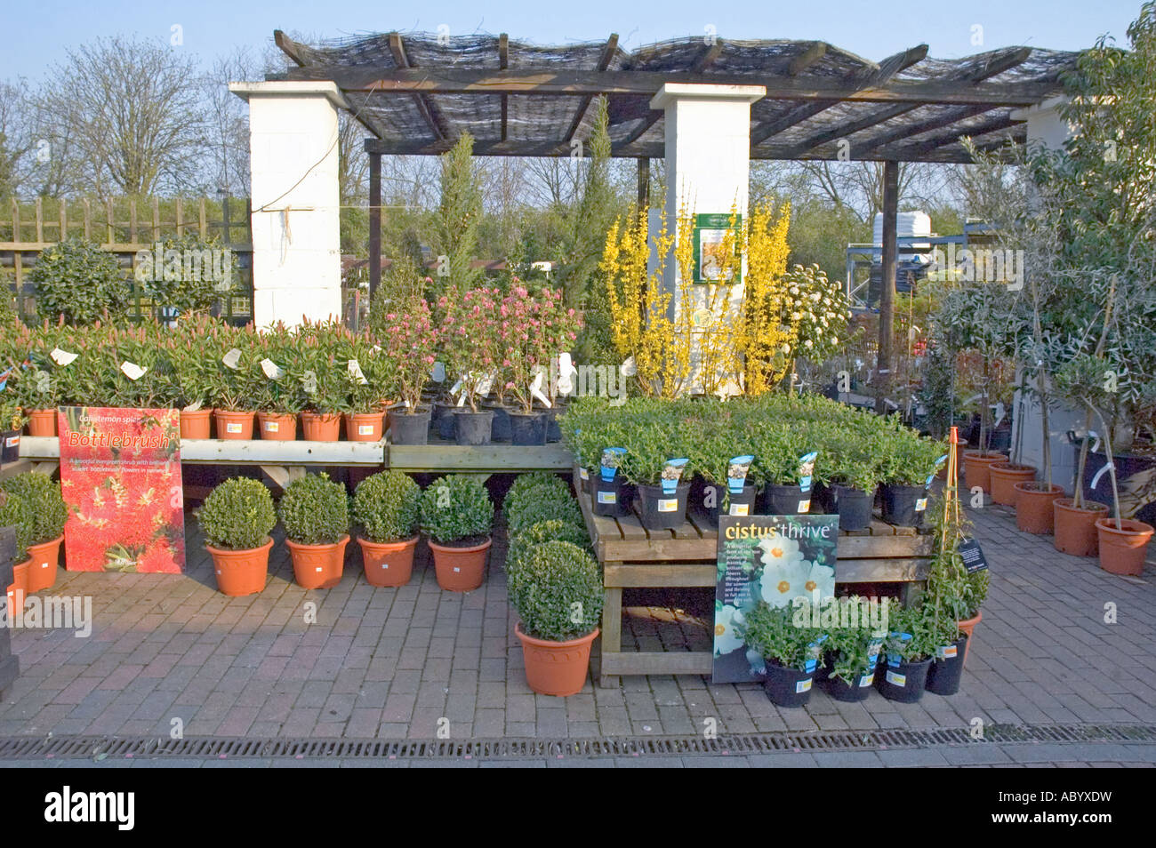Garden Centre: Display At Alexandra Palace Garden Centre London England