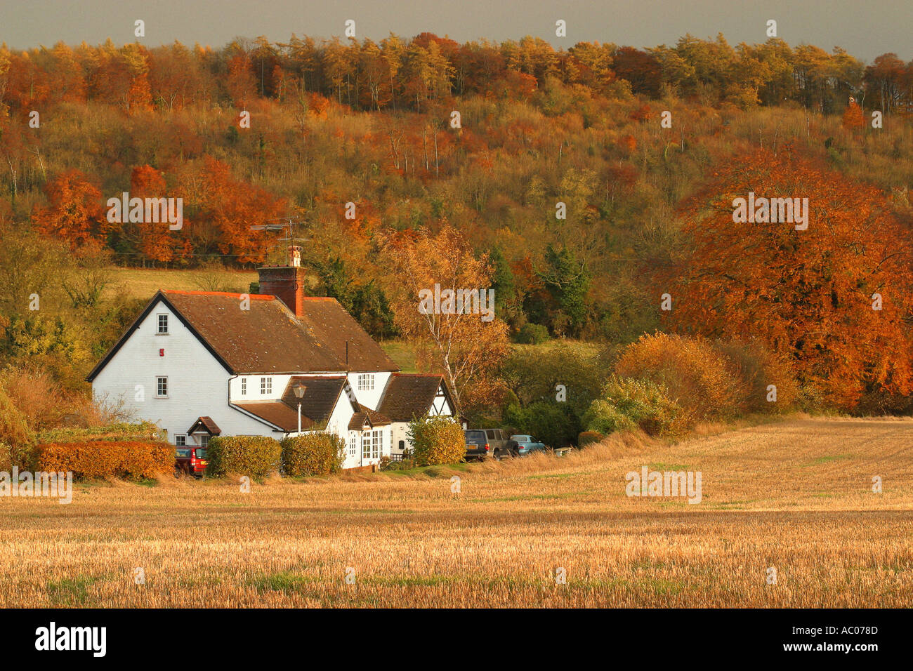 Farmhouse in the Chilterns - Stock Image