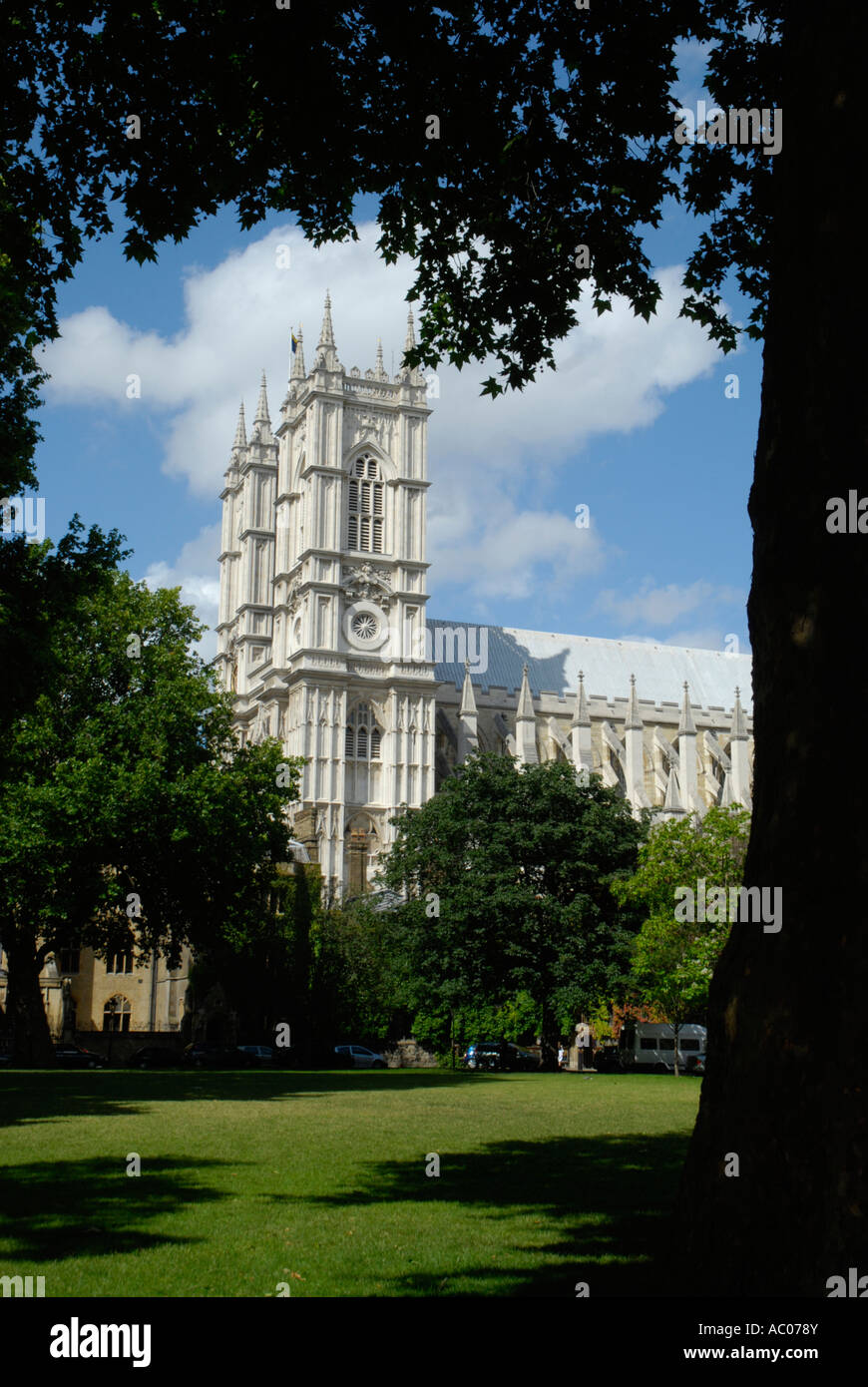 View of south face of Westminster Abbey framed by trees in Dean's Yard Westminster London England - Stock Image