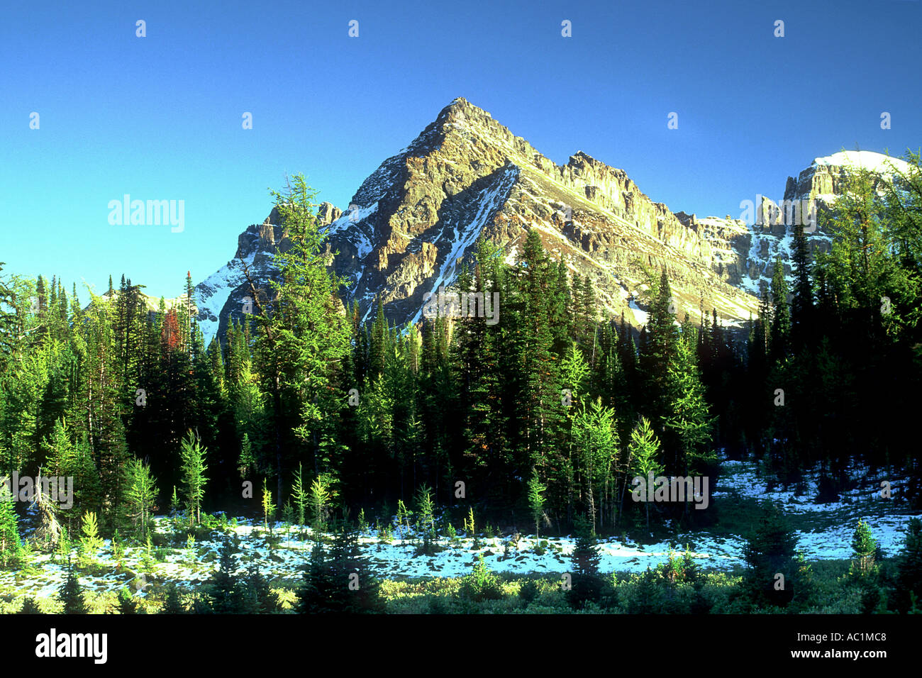 Naiset Point after a fall snow dusting Mount Assiniboine Provincial Park British Columbia Canada Stock Photo