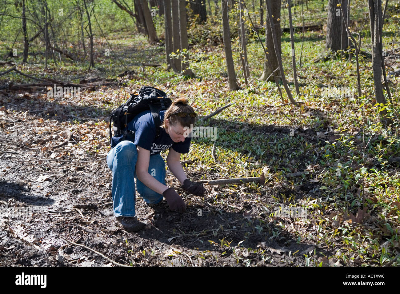 Volunteers Clean Trash from Park on Earth Day - Stock Image