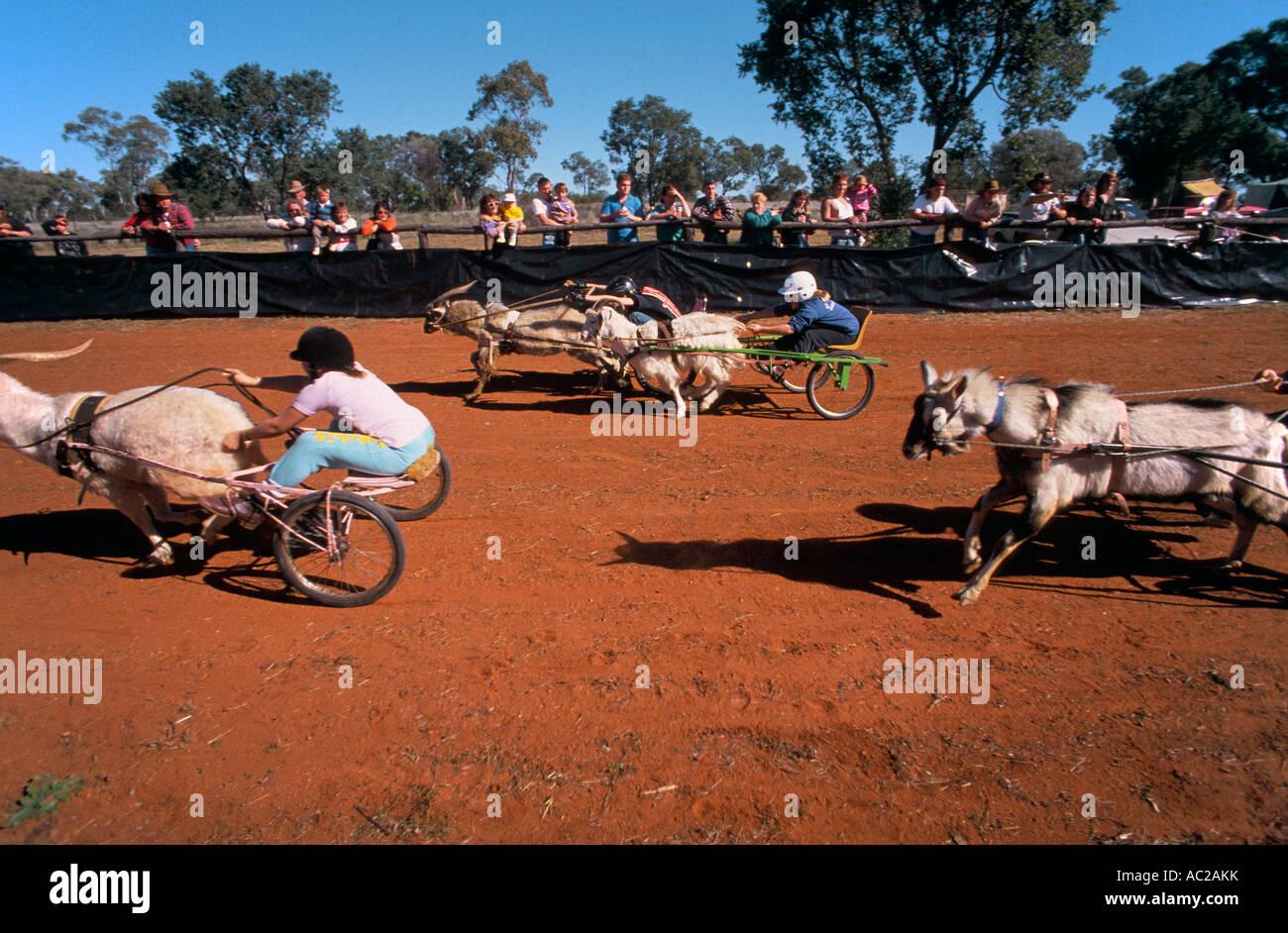 Goat Races, outback Australia - Stock Image