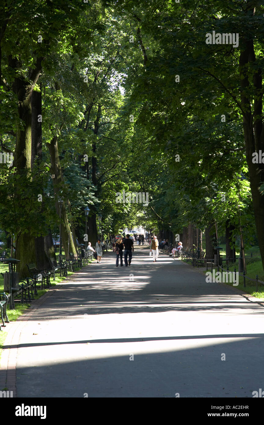 vertical footpath through the planty public parks and gardens with people walking on them in Krakow - Stock Image