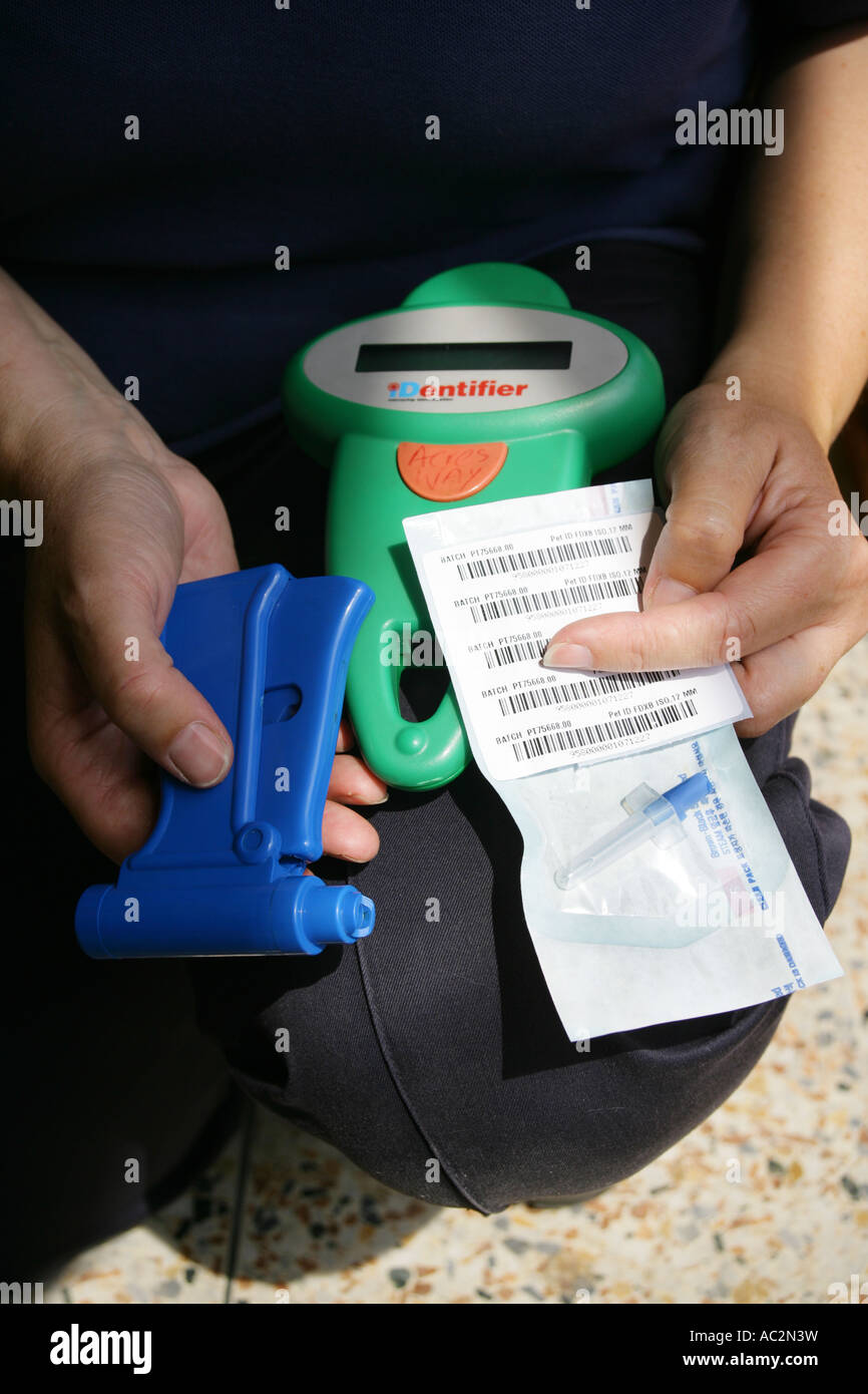 Borough Council animal warden holding dog microchipping equipment gun, electronic chip and scanner equipment. - Stock Image