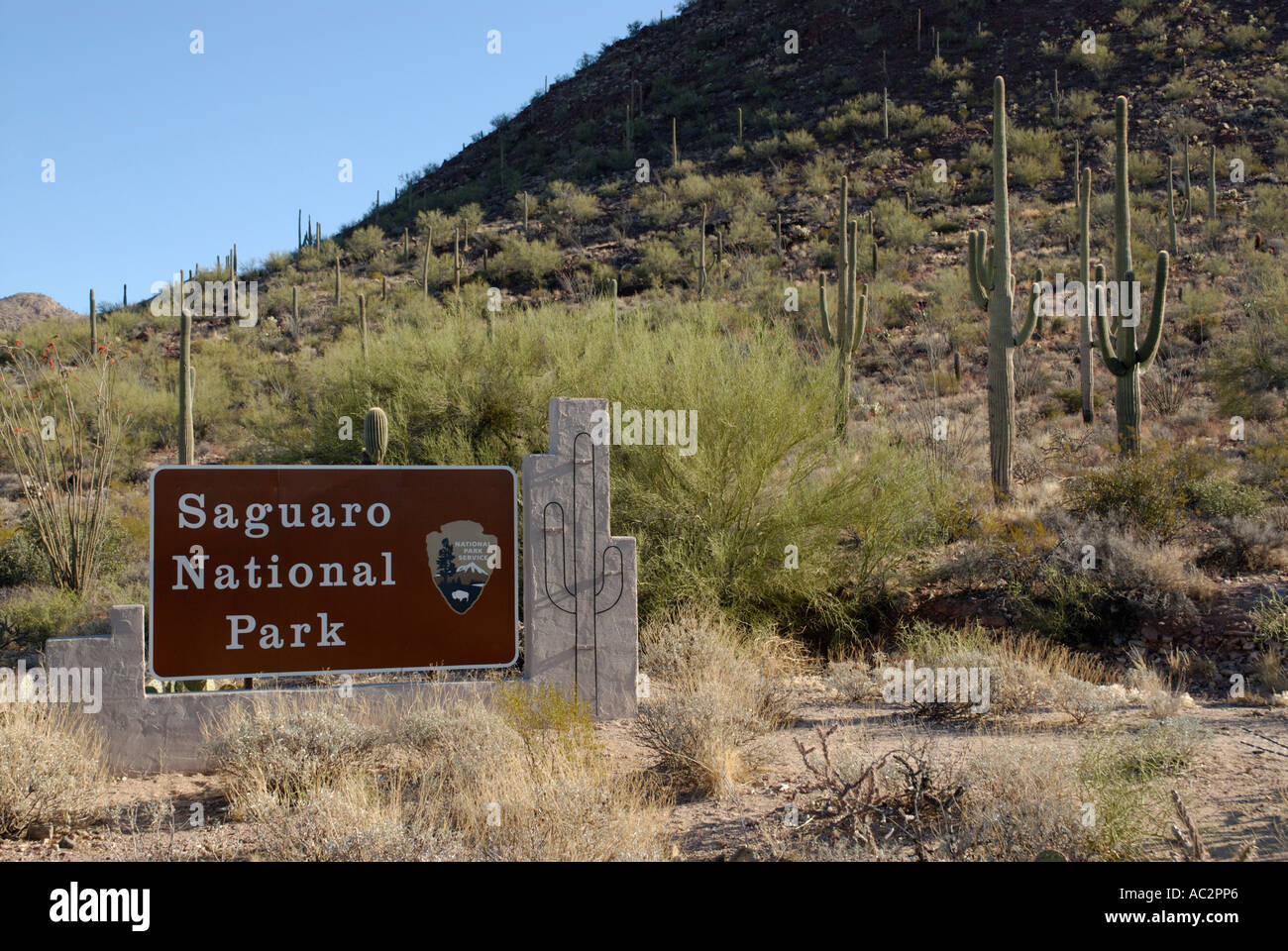 Entrance sign for Saguaro National Park, Arizona, USA, with cacti in background - Stock Image