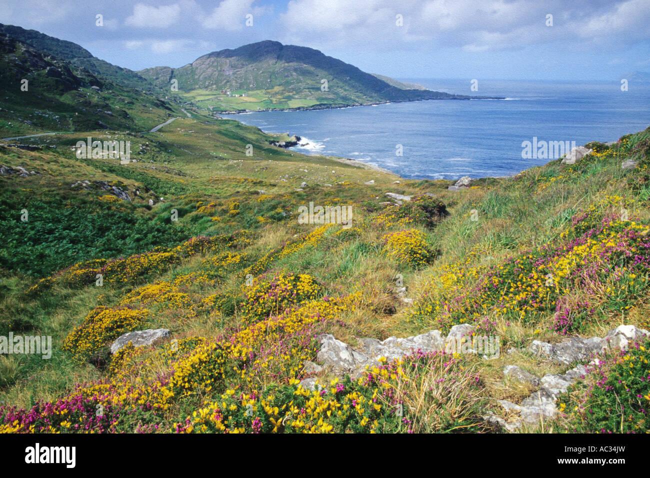 Beara Peninsula, Ireland - Stock Image