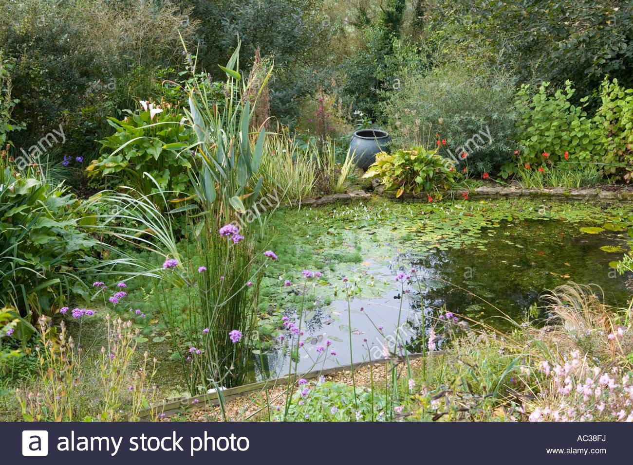 Special Plants Derry Watkin s garden Bath UK summer informal pond ...
