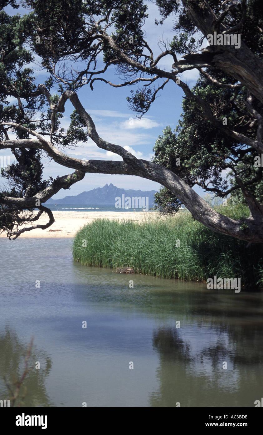 Waipu, New Zealand - Stock Image