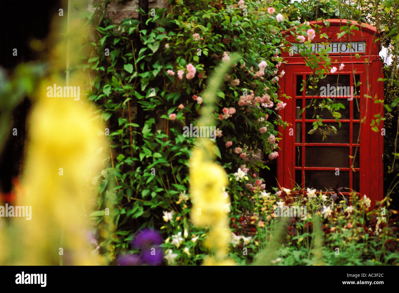 England, Chelsea Flower Show, Yorkshire Forward Garden, Telephone booth Stock Photo