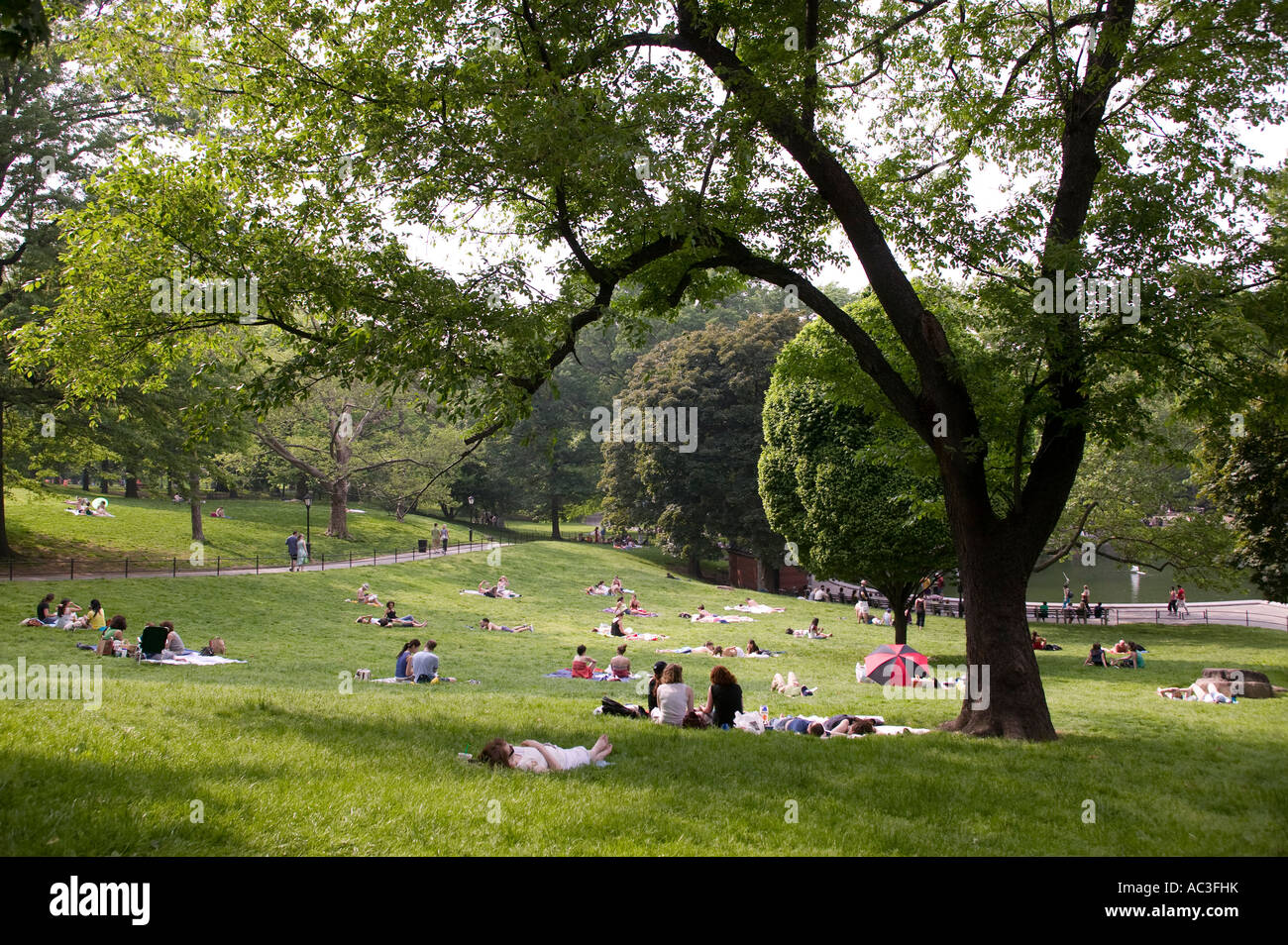 People Enjoying The Nice Weather In Central Park New York City Stock Photo Alamy