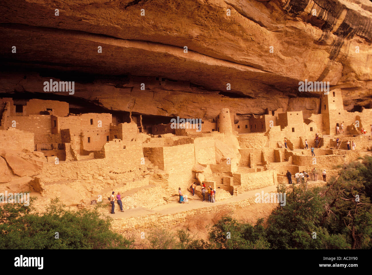 Anasazi Indian ruins Cliff Palace Mesa Verde National Park Colorado - Stock Image