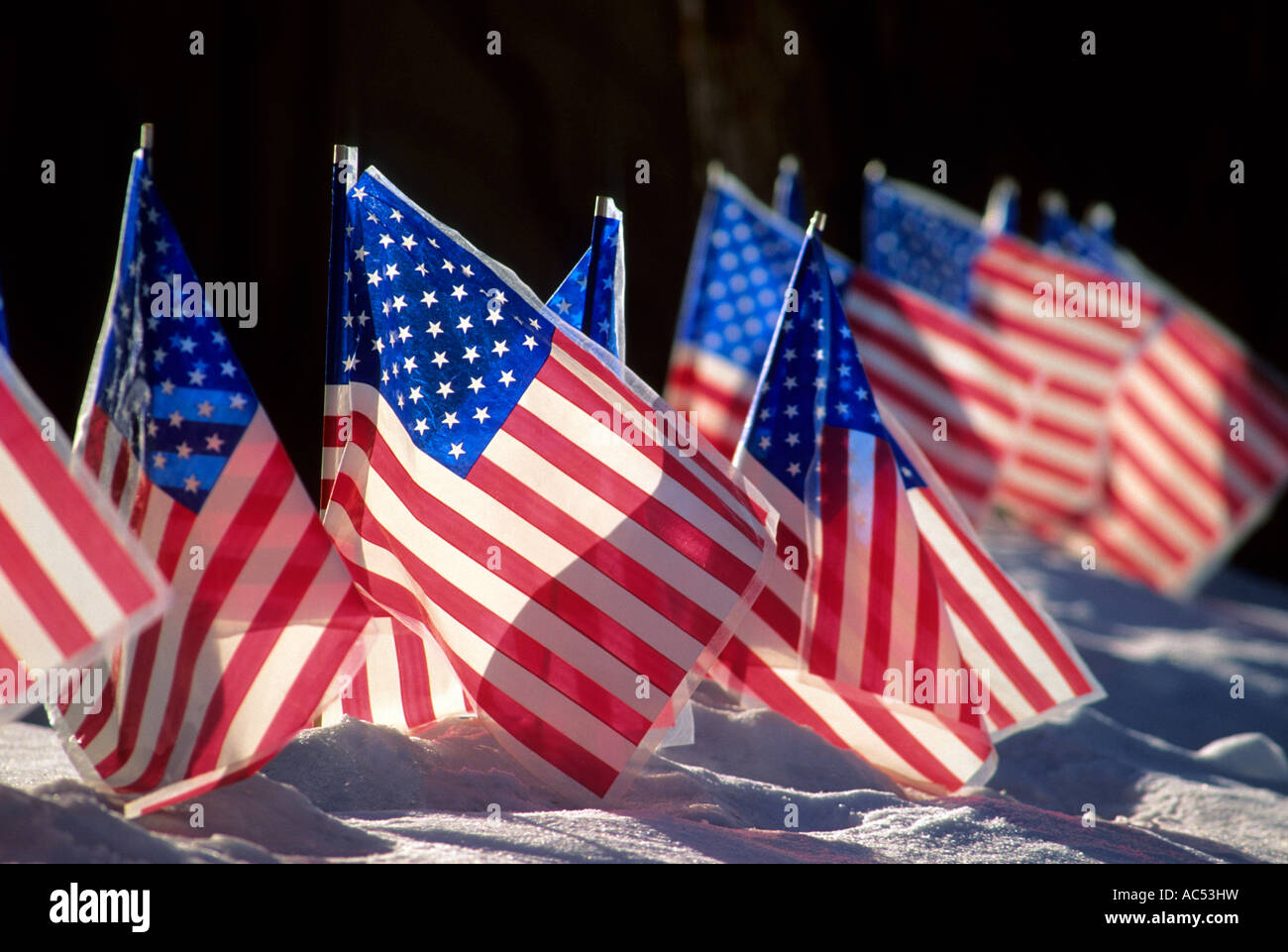 AMERICAN FLAGS IN THE SNOWY FRONT YARD OF A MINNESOTA HOME. WINTER. - Stock Image