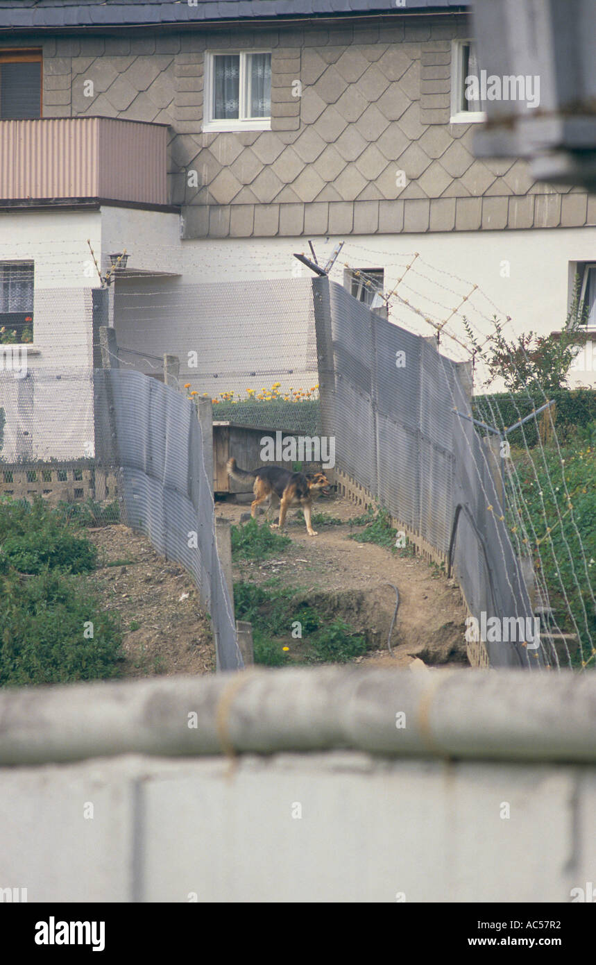 IRON CURTAIN EAST GERMAN BORDER GUARD DOG PATROLLING BETWEEN THE DOUBLE FENCE AT BLANKENBERG 1989 The fall of communism - Stock Image