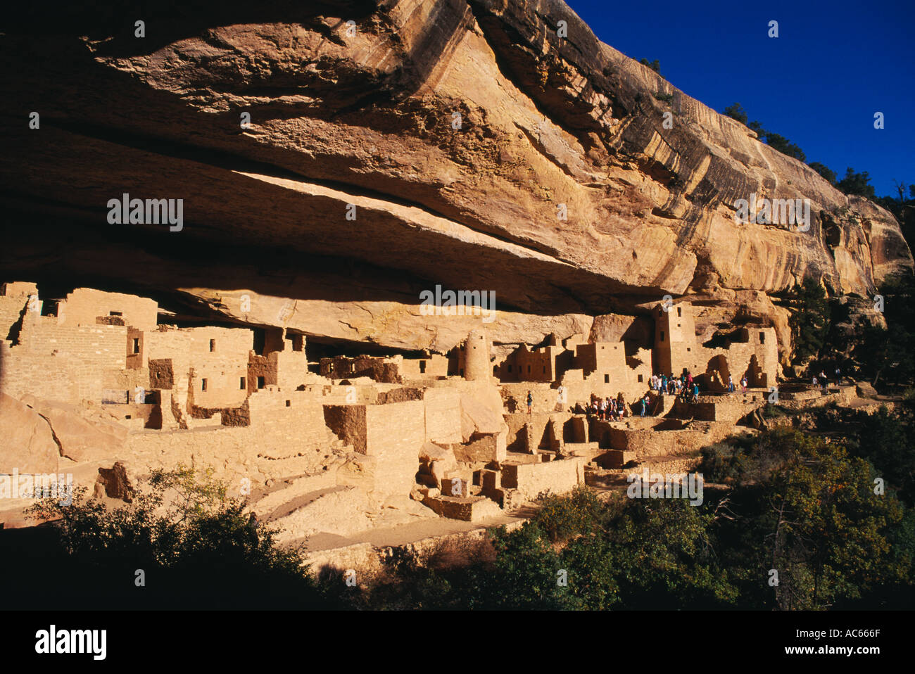 The Cliff Palace of the Anasazi Cliff Dwellings in Mesa Verde National Park Colorado - Stock Image
