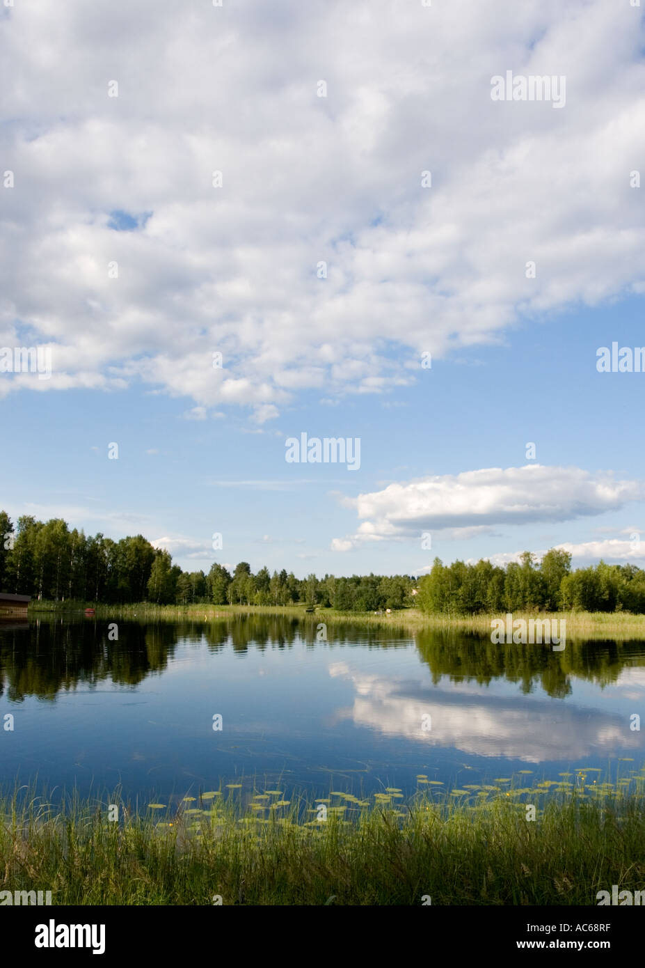River scenery from Finland - Stock Image
