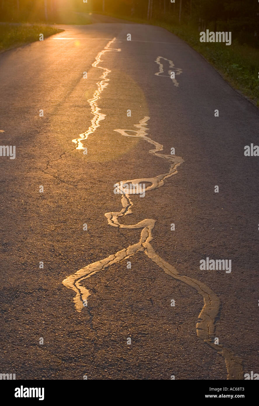 Cracks in tarmac, fixed with tar, glowing in evening light - Stock Image