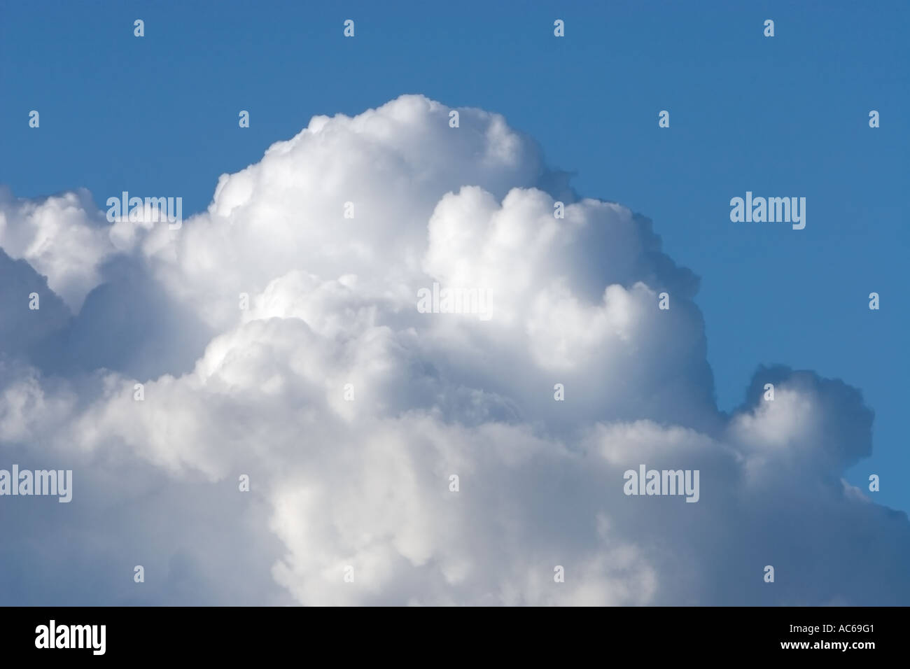 Close-up of white rising cloud on blue sky - Stock Image