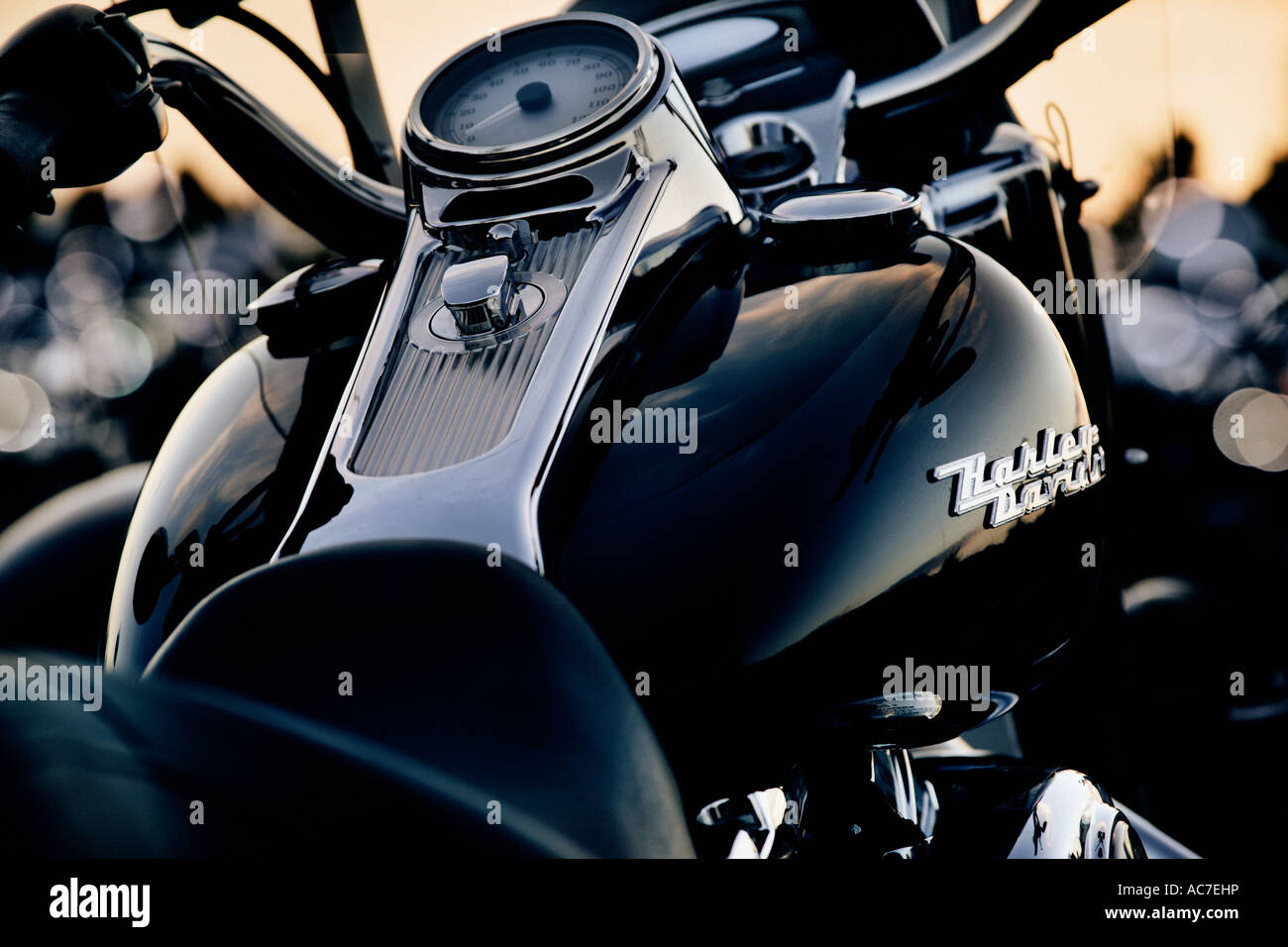 harley davidson motorcycle showing close up of fuel tank and stock photo 13066353 alamy. Black Bedroom Furniture Sets. Home Design Ideas