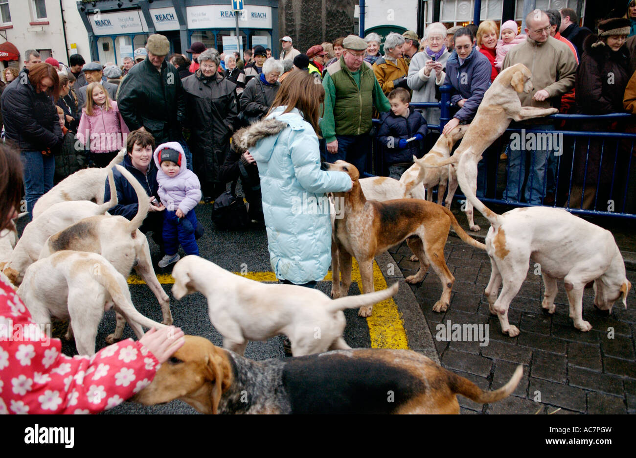 Monmouthshire Hunt gather outside The Angel Hotel Abergavenny South Wales UK GB for Boxing Day meet - Stock Image