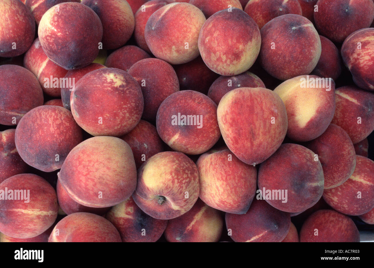 Fresh fruit for sale on a market stall Chelsea Farmers Market Chelsea England Peaches - Stock Image