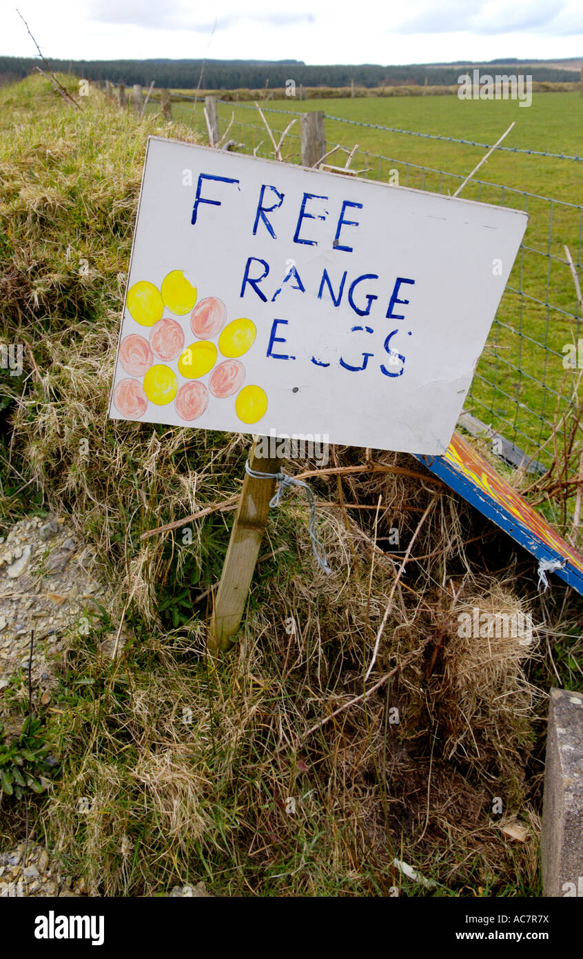 Sign for FREE RANGE EGGS on country road near Carmarthen Carmarthenshire Wales Wales UK - Stock Image