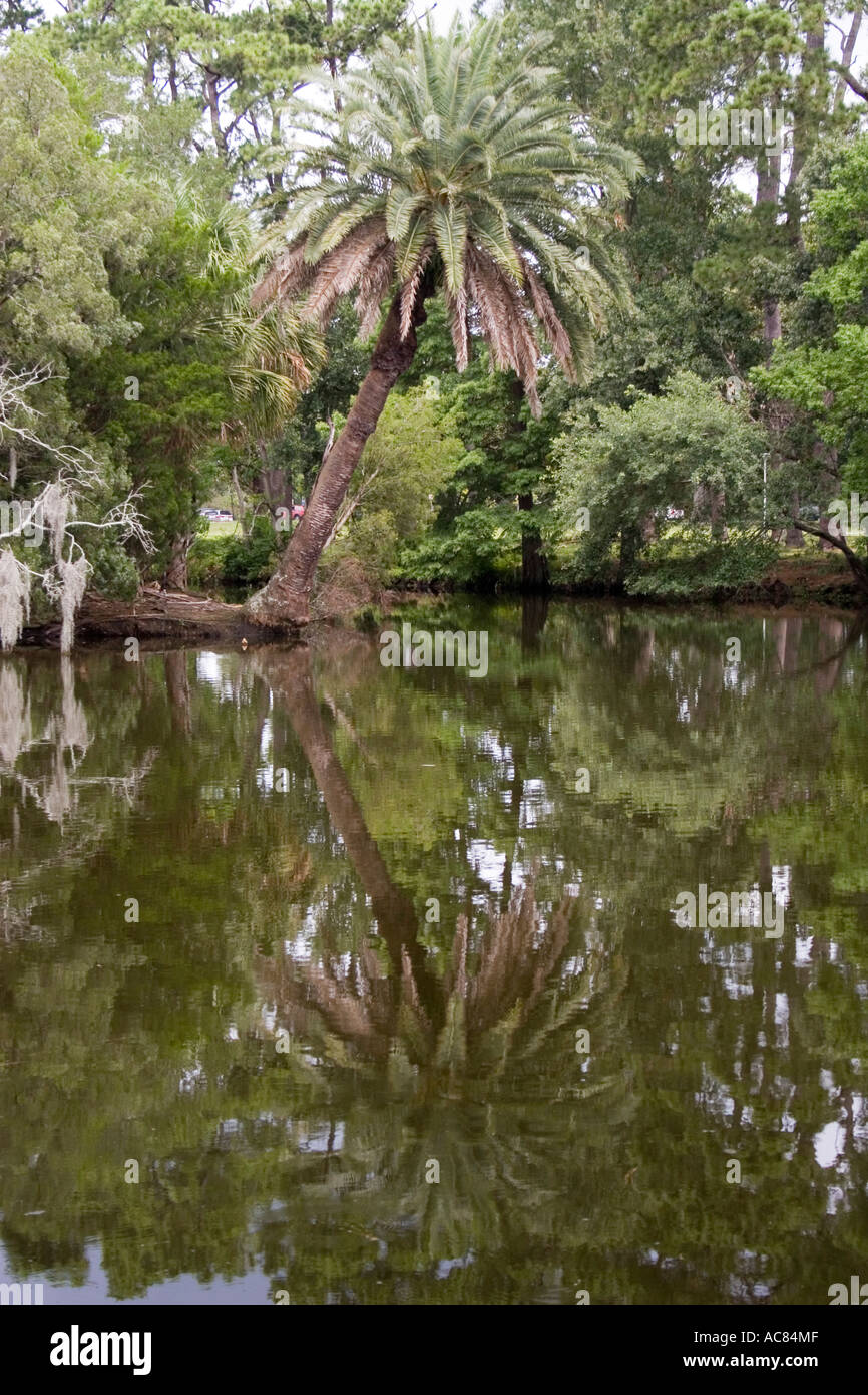 City Park New Orleans Stock Photos & City Park New Orleans Stock ...