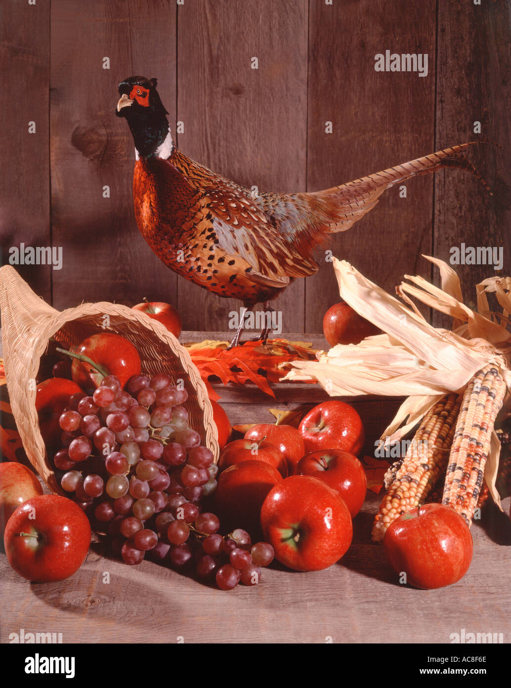 Harvest still life with cornucopia and pheasant against an old barnwood background in vertical format - Stock Image