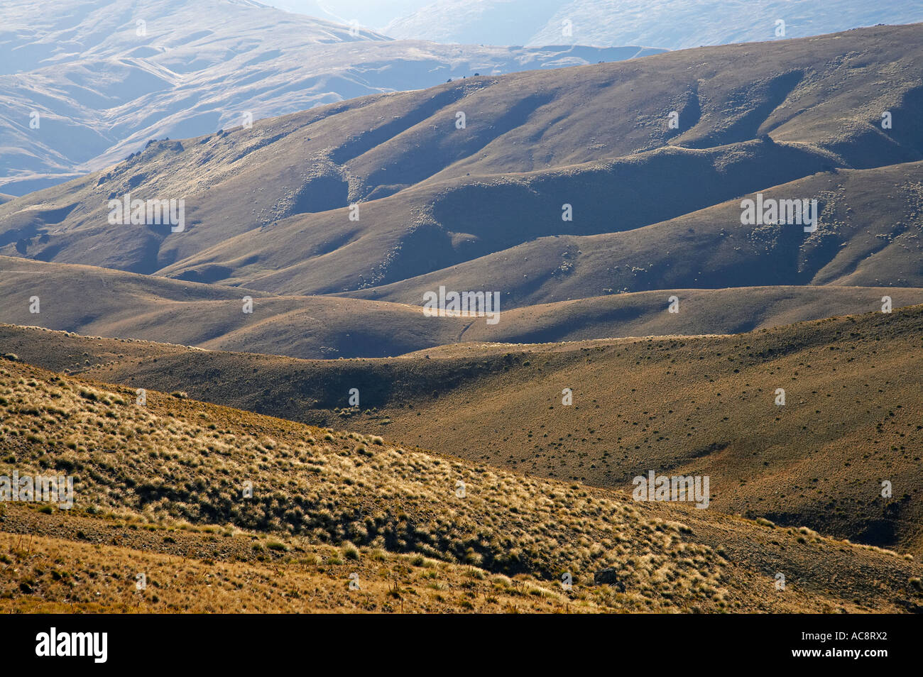 Carrick Range Central Otago South Island New Zealand Stock Photo