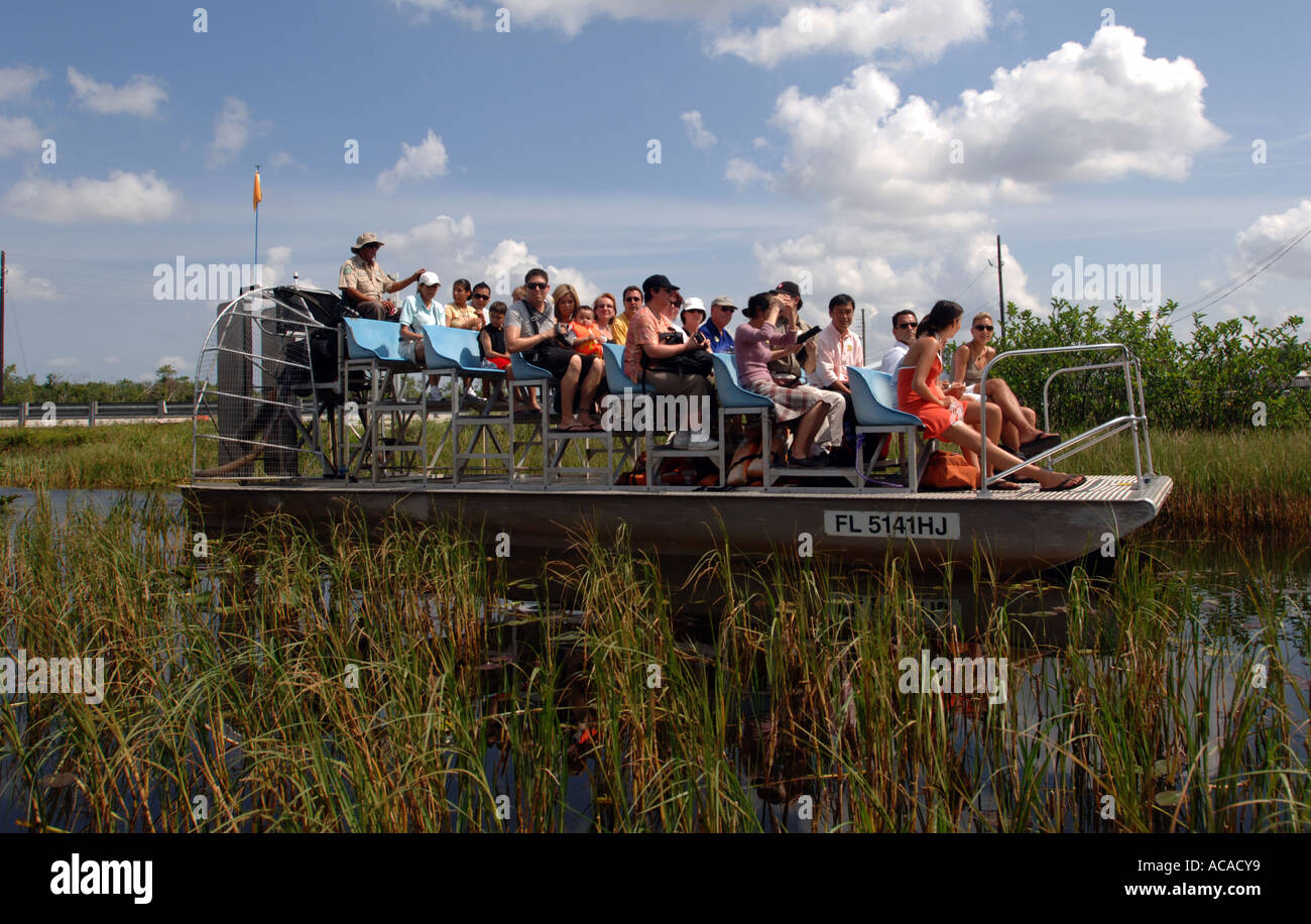 Tourist On Airboat Ride Gator Park Miami In The Everglades National