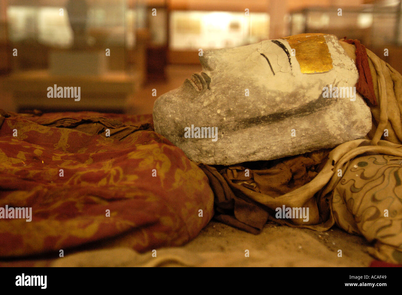 Preserved corpse in the Xinjiang Regional museum Urumqi China on the Silk Road - Stock Image