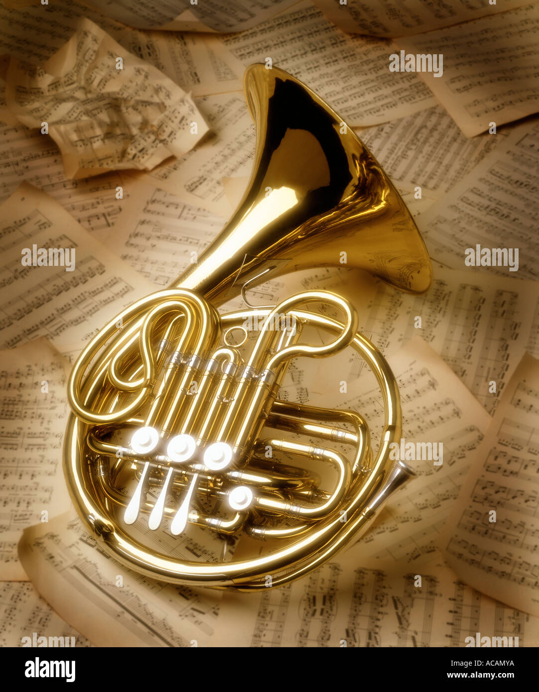 French Horn - Stock Image