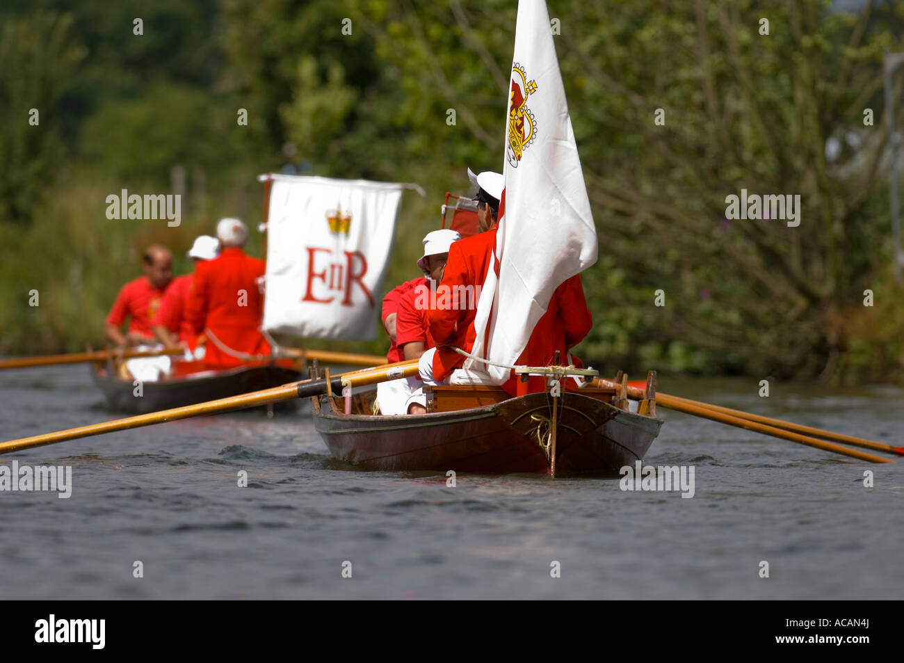 The traditional Thames rowing skiffs  at  the annual swan upping River Thames - Stock Image