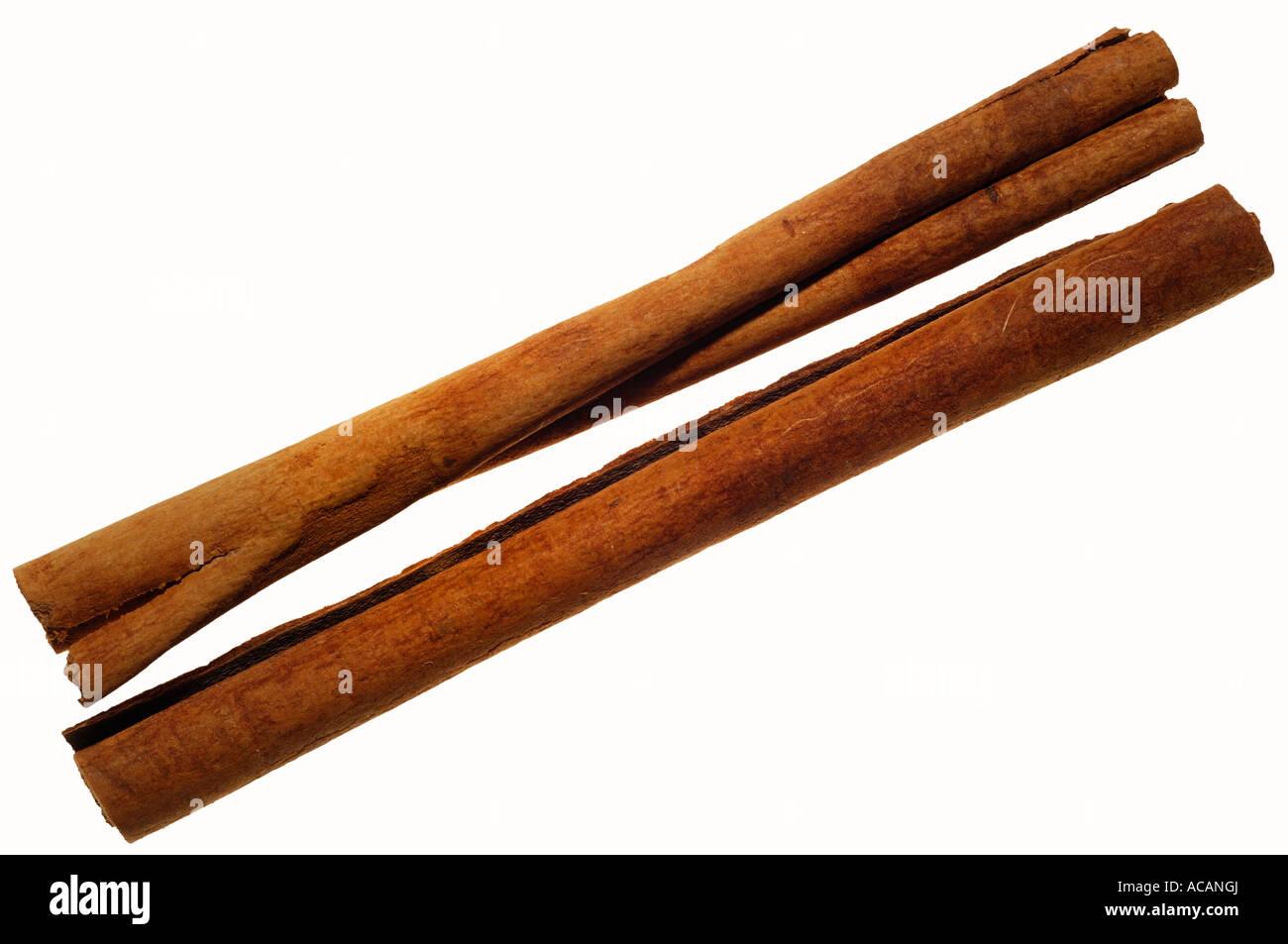 Cinnamon sticks (Cinnamonum) Stock Photo