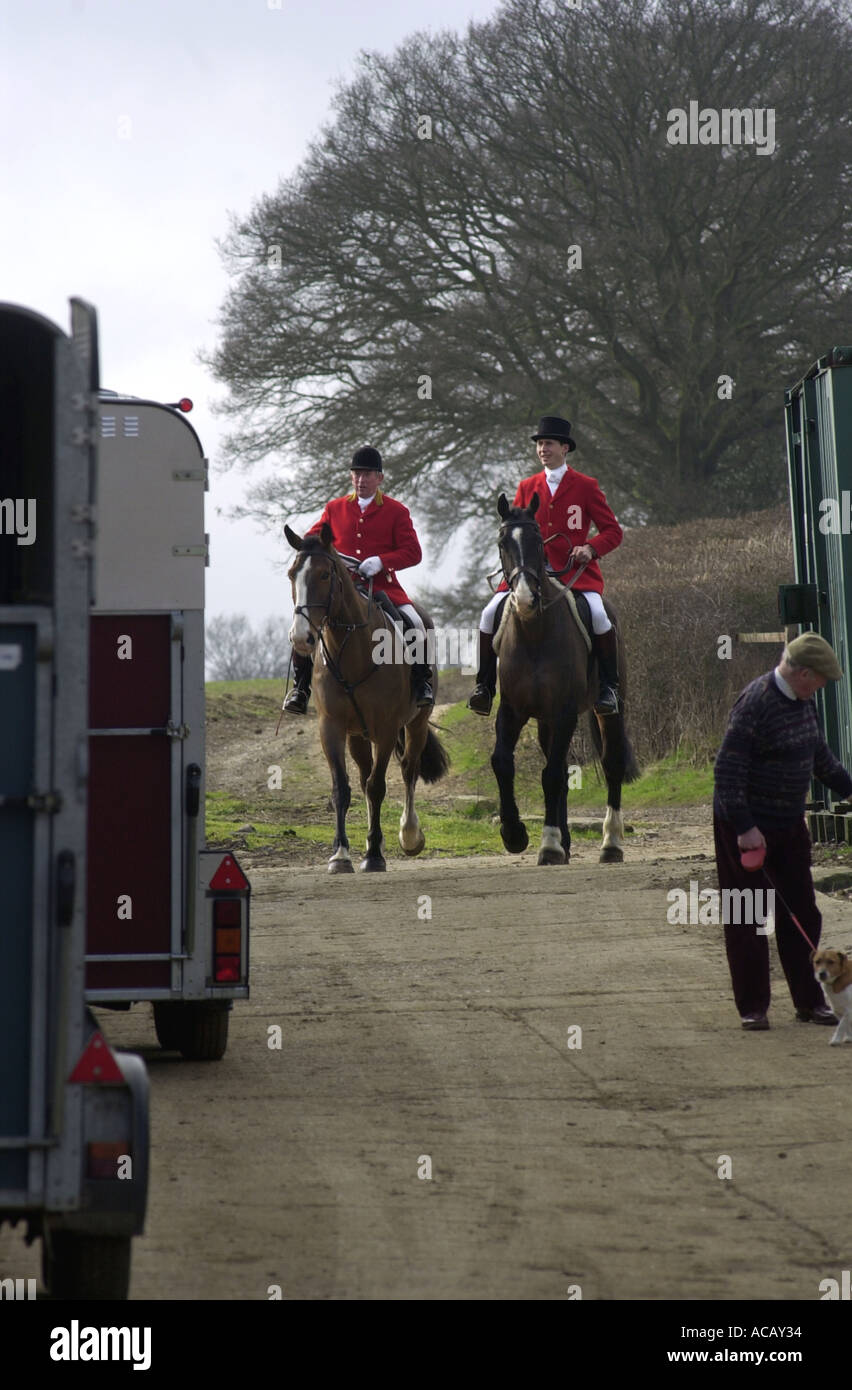 Fox hunting Hunt prepares to go UK - Stock Image