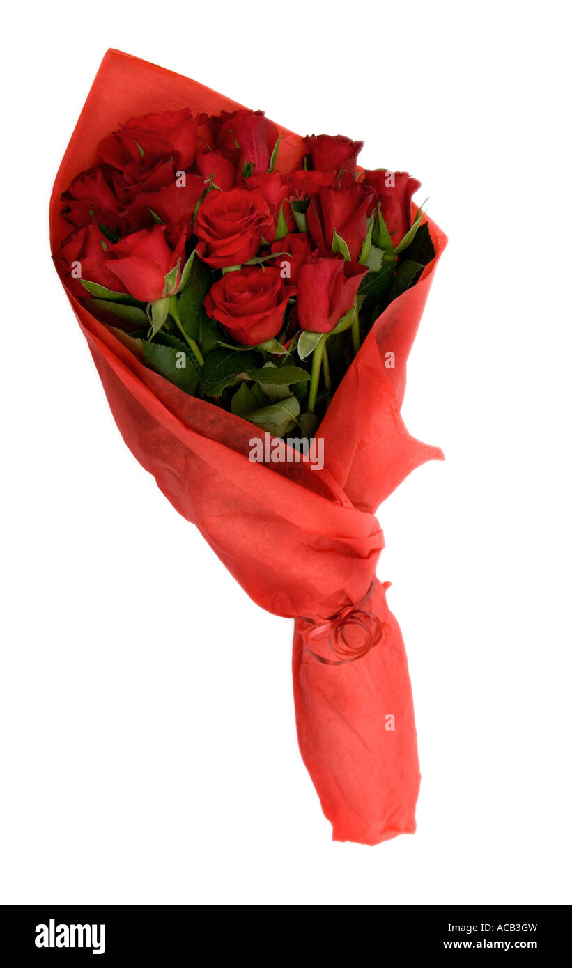 Pick Roses Stock Photos Pick Roses Stock Images Alamy