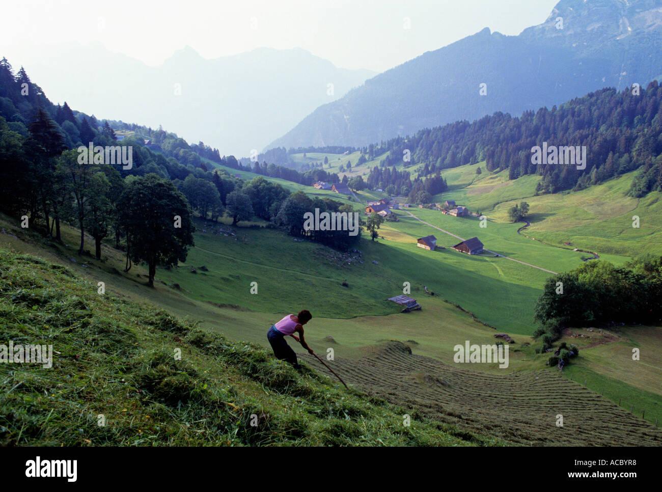 mountain farmer at hay harvest schwandital valley swiss alpes canton of glarus switzerland - Stock Image