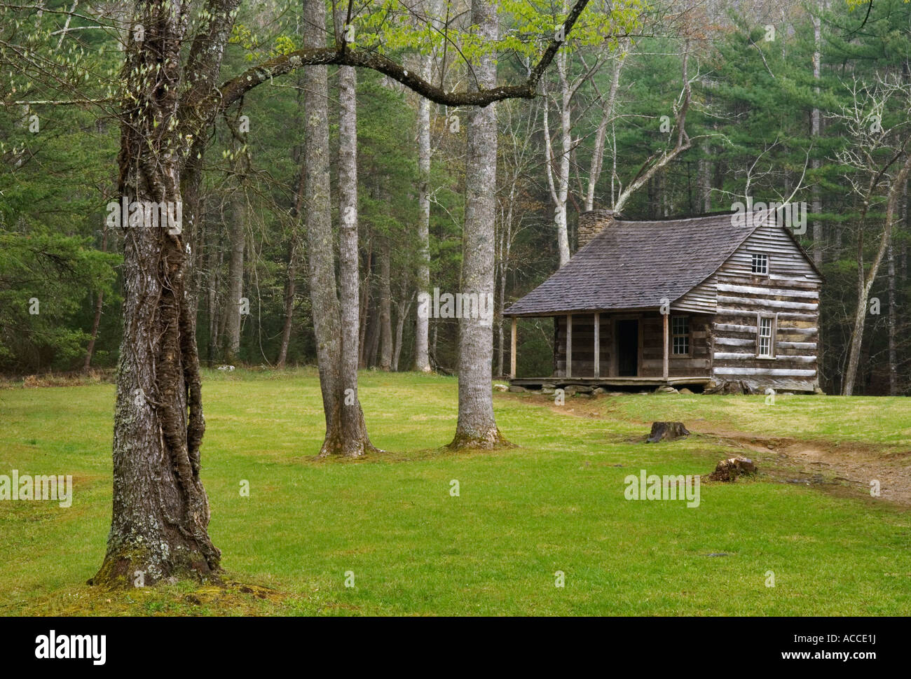 Carter Shields Cabin Cades Cove Great Smoky Mountains National Park Tennessee - Stock Image